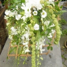 bloemstukken 31