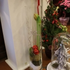 Kerst bij Abby Lempers 19