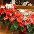 Kerst bij Abby Lempers 68