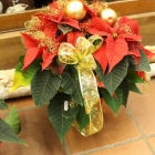 Kerst bij Abby Lempers 38