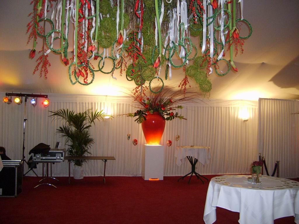 Plafond decoraties 30