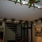 Plafond decoraties 13