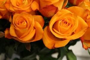 Bos bloemen 06