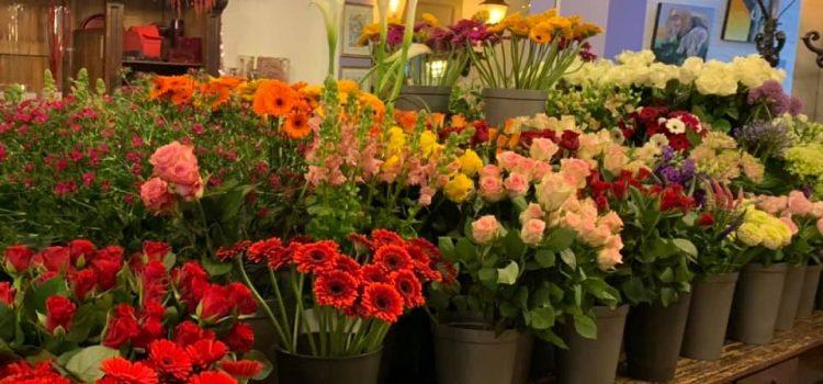 Op zoek naar mooie bloemen?