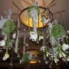 Plafond decoraties 05