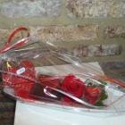 valentijn 04